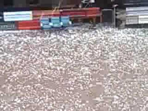 Baseball Size Hail at Sturgis 8-7-09